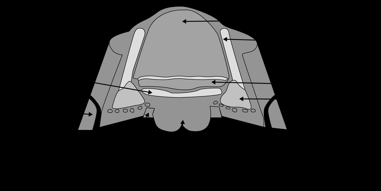 figur-2